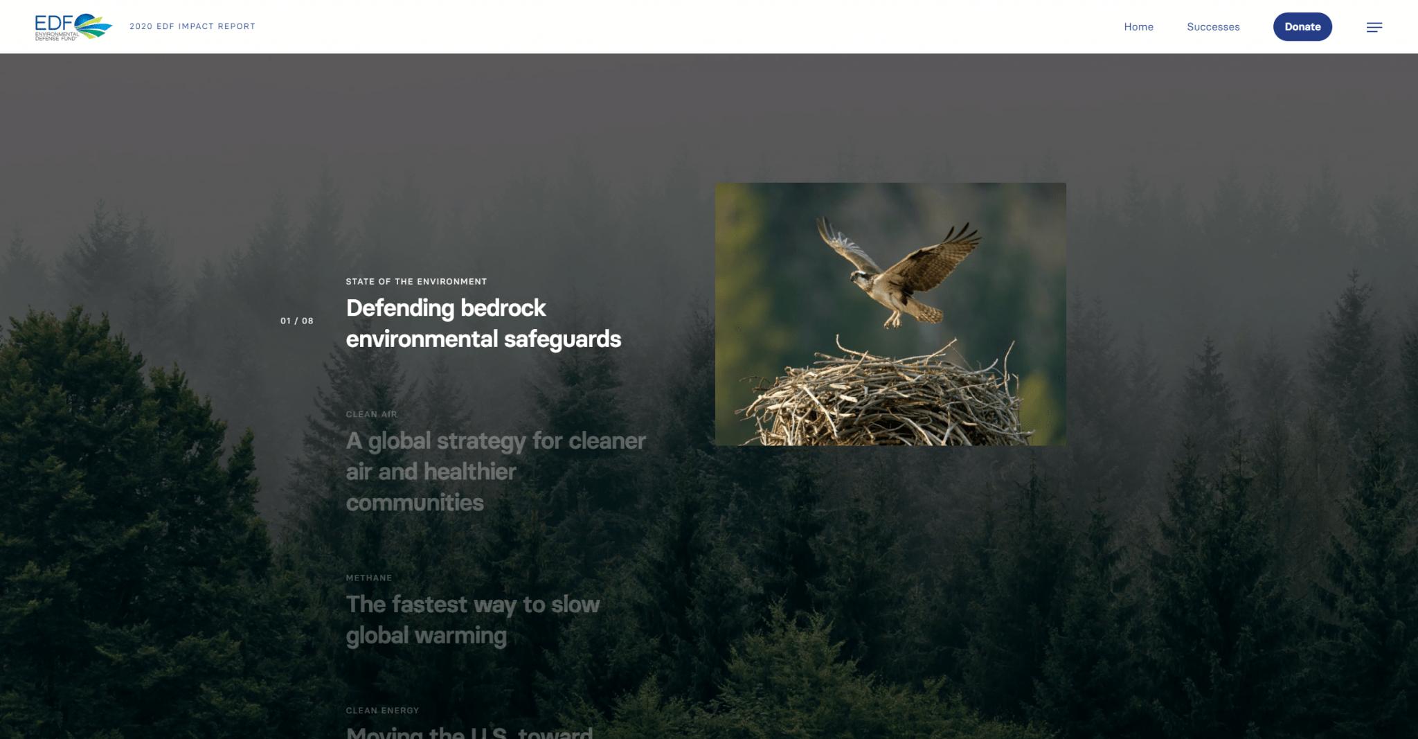https___impact2020.edf.org_ Home – Environmental Defense Fund – 2020 Impact Report_002