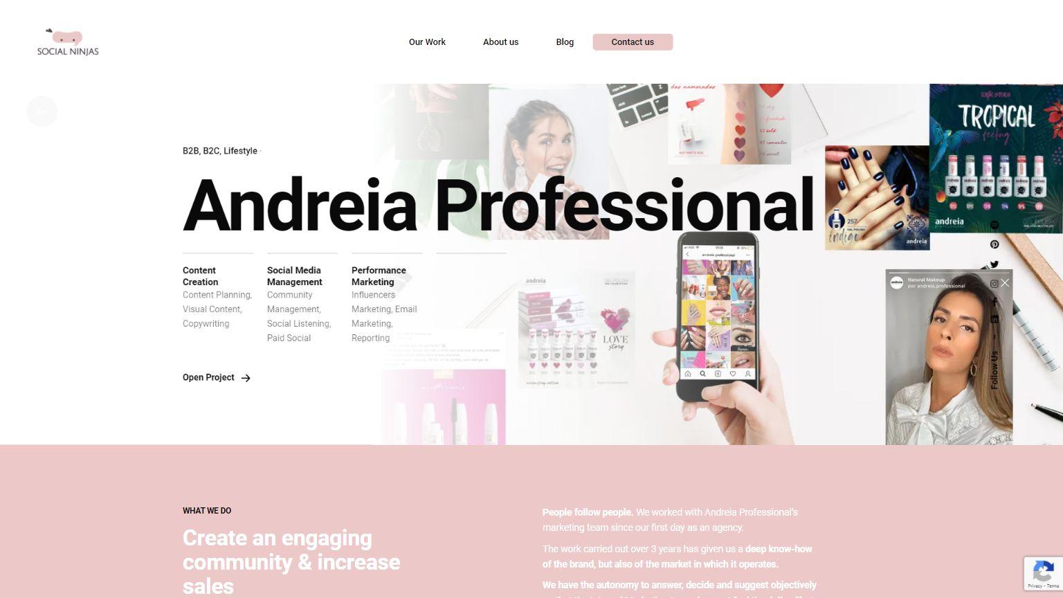 Andreia Professional I Social Ninjas