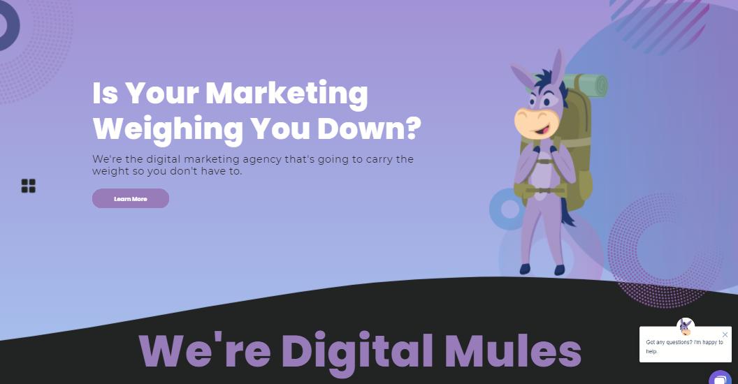 Digitalmules.com