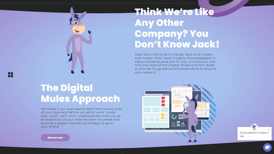 https___digitalmules.com_ Digital Mules_ An All-Inclusive Digital Marketing Agency_002